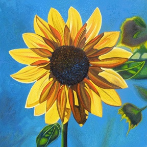 SUNFLOWER #3 • 24 inches x 24 inches • ©2010 Marie Scott