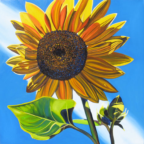 SUNFLOWER #4 • 24 inches x 24 inches • ©2010 Marie Scott