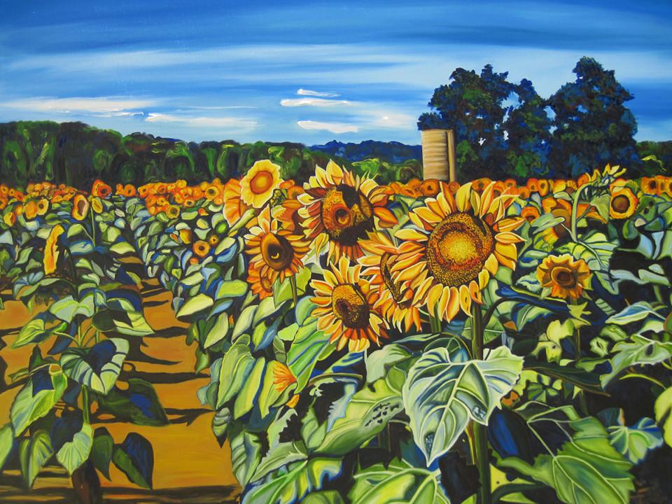 sunflowerpathbig